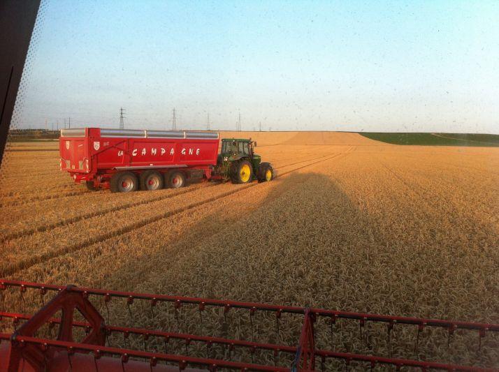 Votre été à vous, ce sera sur le tracteur, au cul de la batteuse. Photo: F.Roussel/Pixel Image