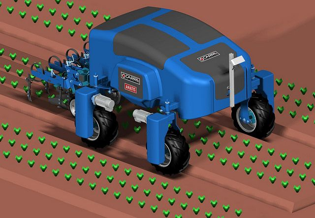 Le robot de binage Anatis de Carré est autonome. Photo : DR