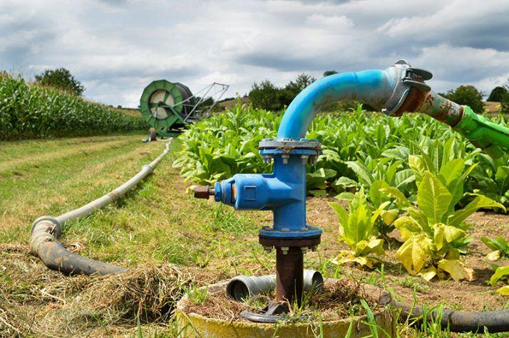 Jeudi 9 mai, le tribunal administratif de Poitiers a prononcé l'annulation des arrêtés réglementant l'irrigation sur les bassins du Marais poitevin et de la Charente. Photo :  jpr03