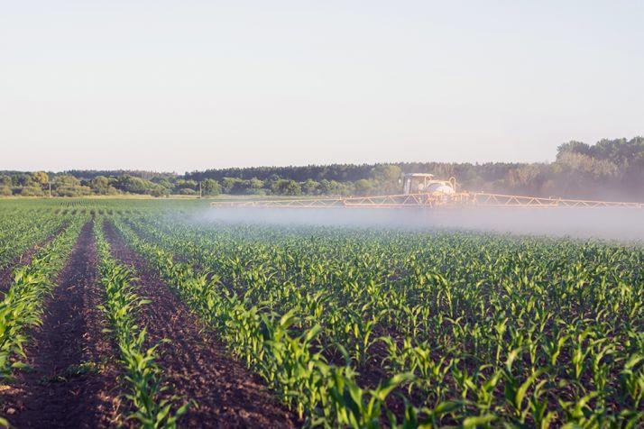 L'association française pour les adjuvants (AFA) communique sur le taux d'utilisation des adjuvants pour les traitements phytosanitaires.