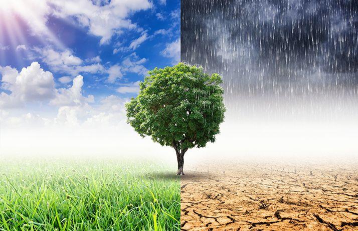 La vulnérabilité des systèmes face aux extrêmes climatiques.© Nirutft/Fotolia