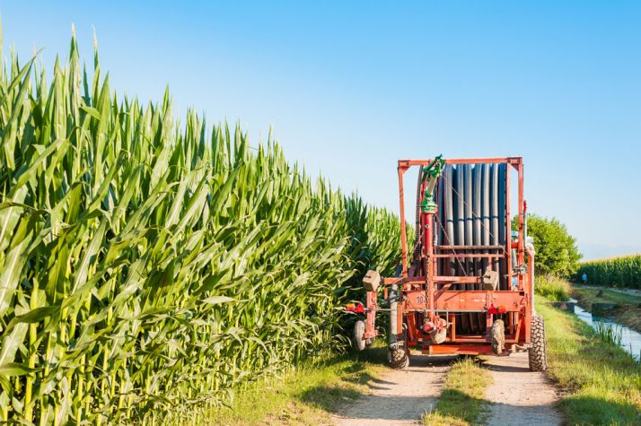 LG Vision Irrigation : un OAD pour l'irrigation du maïs. © Franco Nadalin/Fotolia