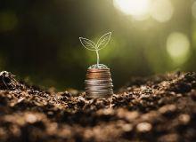 Un redressement du solde des échanges extérieurs grâce aux céréales. © 994yellow/Adobe Stock