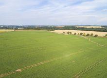 AFRame est une expérimentation d'agroforesterie en Pas-de-Calais pilotée par l'ISA de Lille. ici la parcelle où se déroulera l'essai.