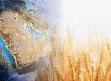 Les pays du golfe, quel enjeu pour les céréales ? © 1xpert etsonden/Fotolia