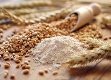 L'ANMF, l'association nationale de la meunerie française, vient de publier la nouvelle liste des blés meuniers.