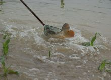 Conséquences des fortes précipitations dans la région Centre - Val de Loire. © DR