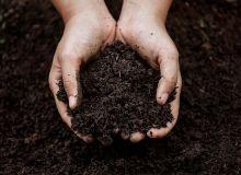 L'Afaïa rappelle dans un communiqué quelques points de vigilance sur la réalité des amendements organiques qui revendiquent une origine végétale avec des teneurs élevés en azote sans transformation chimique.