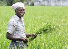 Au pays de Gandhi, tout est possible. © V.R.Murralinath/Fotolia