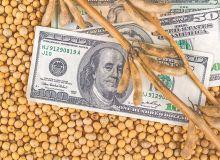 Du soja américain pour apaiser les tensions commerciales. © Bits and splits/Fotolia