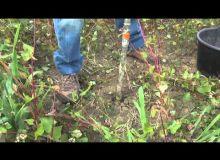 Les tutos de Cathy #4 : réaliser un prélèvement de sol pour analyse des reliquats azotés