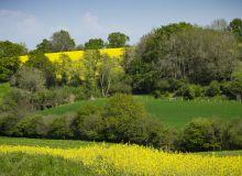 Mesurer la quantité de CO2 que peuvent absorber ou émettre les parcelles agricoles en fonction des systèmes de production.