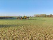 Modulation d'herbicides sur blé. Crédit photo : Michaël Godiet