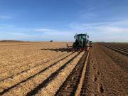 Plantation de pommes de terre en direct dans une butte pré-formée à l'été précédent. Crédit photo : Fabien Montée