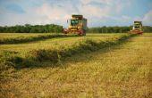La production de fourrage déshydraté s'est établie à 745000 tonnes en France en 2016. © M. Lecourtier/Pixel image