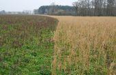 Sur les Éco-régimes, la FNSEA estime qu'« il faudra réintégrer des pratiques absentes de la proposition du ministère de l'Agriculture telles que l'agriculture de précision, l'agriculture de conservation des sols... »