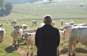 Une étude réalisée par la chambre d'agriculture de Saône-et-Loire indique que près de six exploitants sur dix désespèrent et un tiers est menacé de burn out.