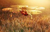 Le projet européen Invite de 8 millions d'euros, animé par François Laurens de l'Inra d'Angers, devrait améliorer sensiblement les conditions de sélection de nombreuses espèces dont le blé.