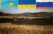 Changement climatique : quels impacts sur la production de la mer Noire ? © OlegOk, Fotofabrika, Fredex, Fabianodp/Fotolia