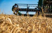 Moisson 2021, un bilan en demi-teinte pour l'AGPB
